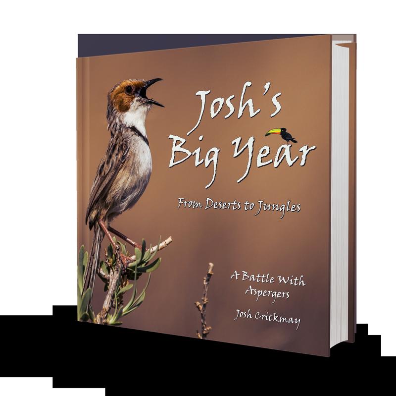 joshs-big-year-cover-2