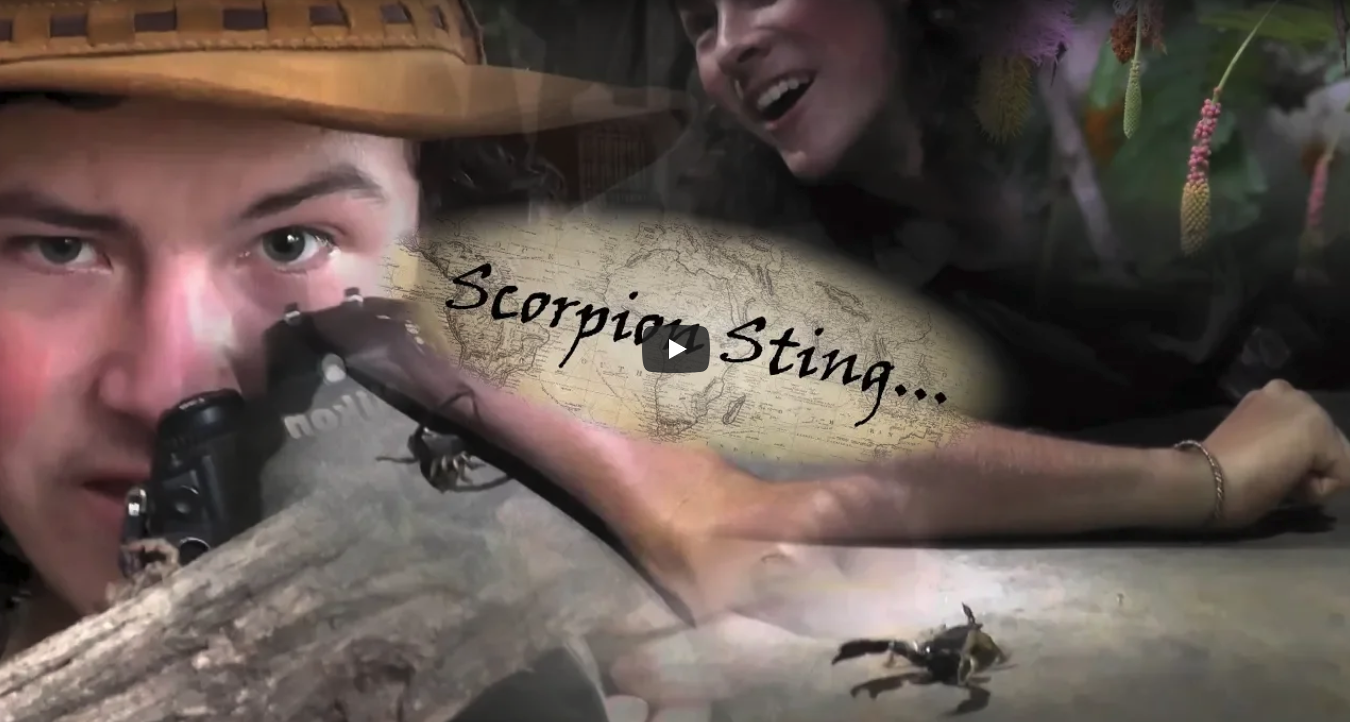 Episode 12: Ibandla Madness Part 2 – Scorpion Sting!
