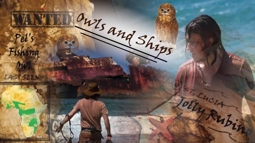 Episode 17: Owls and Shipwrecks
